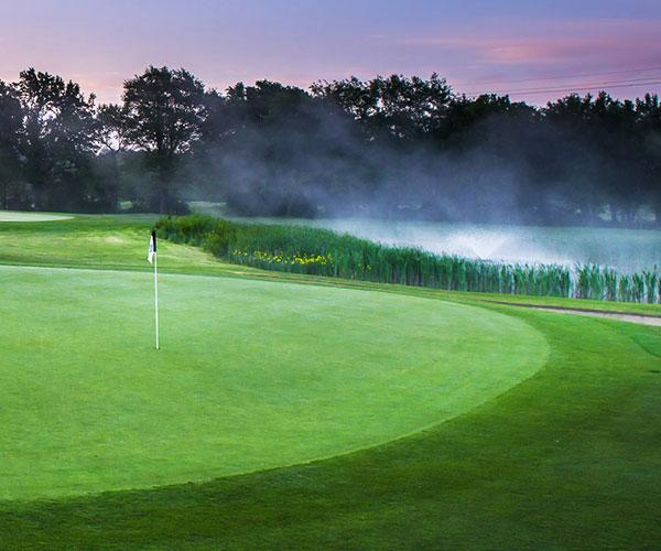 Mist on green